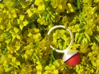 cynthia-reynolds-ring1