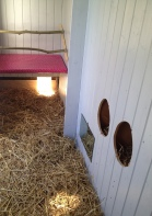 roosting bars and nesting boxes